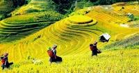 Giảm giá vé máy bay cho đồng hương Bắc Giang tại Vũng Tàu Giảm giá vé máy bay cho đồng hương Bắc Giang tại Vũng Tàu