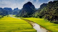 Giảm giá vé máy bay cho đồng hương Ninh Bình tại Vũng Tàu