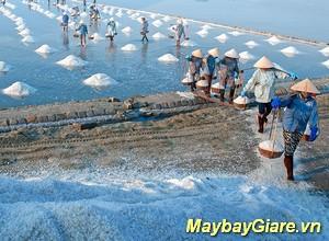 Những địa điểm du lịch đẹp nhất tại Quảng Ngãi, chia sẽ kinh nghiệm du lịch Quảng Ngãi Du lịch Quảng Ngãi