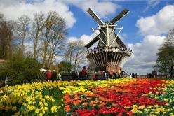 Đặt mua vé máy bay Hà Nội đi Hà Lan Vé máy bay Hà Nội đi Hà Lan