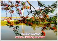 Bảng giá vé máy bay Sài Gòn Hải Phòng của Jetstar cập nhật mới nhất Bảng giá vé máy bay Sài Gòn Hải Phòng của Jetstar