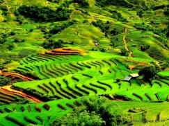 Đại lý vé máy bay giá rẻ tại huyện Văn Quan uy tín và chất lượng Đại lý vé máy bay giá rẻ tại huyện Văn Quan