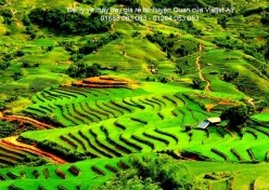 Đại lý vé máy bay giá rẻ tại huyện Văn Quan của Vietjet Air uy tín hàng đầu Đại lý vé máy bay giá rẻ tại huyện Văn Quan của Vietjet Air