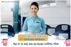 Đại lý vé máy bay giá rẻ tại huyện Giồng Tôm của Vietnam Airlines bán vé rẻ nhất thị trường Đại lý vé máy bay giá rẻ tại huyện Giồng Tôm của Vietnam Airlines