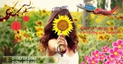 Đại lý vé máy bay giá rẻ tại Lâm Đồng của Vietjet Air