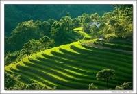 Giảm giá vé máy bay cho đồng hương Lai Châu tại Vũng Tàu