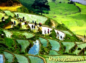 Những địa điểm du lịch đẹp nhất tại Nghệ An, chia sẽ kinh nghiệm du lịch Nghệ An Du lịch Nghệ An