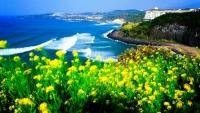 Vi vu du lịch Seoul tận 5 ngày mà không cần làm visa đối với khách du lịch từ ĐNA Tin