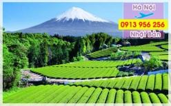 Đặt mua vé máy bay Hà Nội đi Nhật Bản Vé máy bay Hà Nội đi Nhật Bản